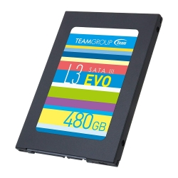 TEAM L3 EVO 2.5in SATA SSD 480GB [T253LE480GTC101]