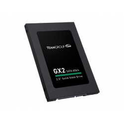 TEAM GX2 2.5in SATA SSD 256GB [T253X2256G0C101]